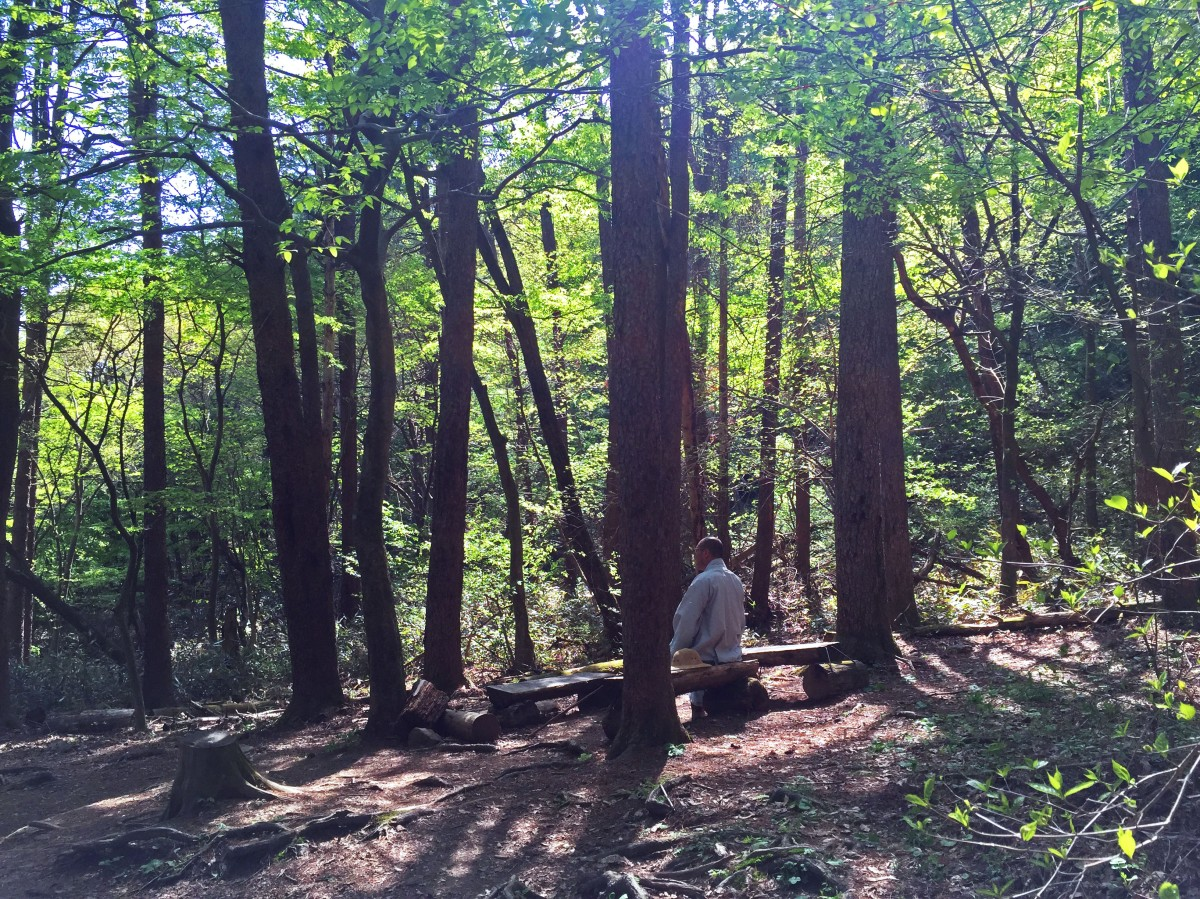 Korea trekking - Gayasan edition